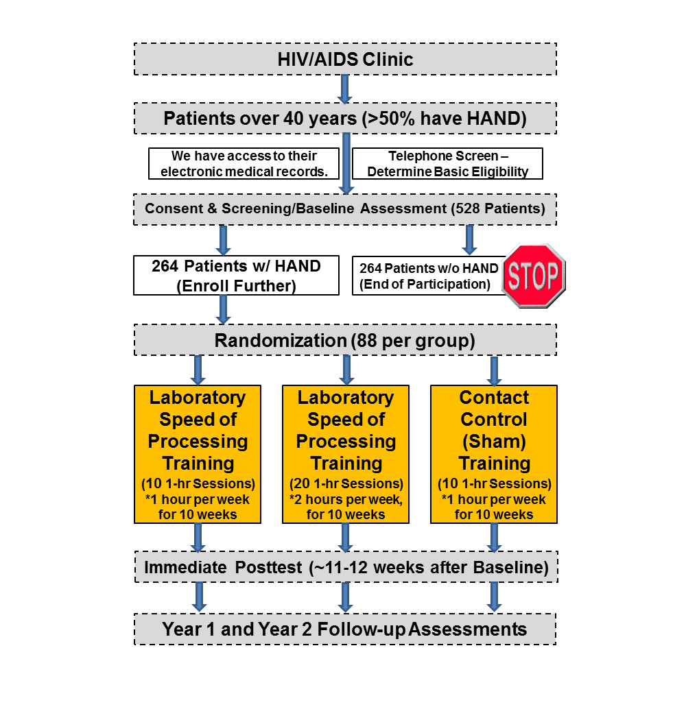 Jrp Testing A Computerized Cognitive Training Protocol In Adults Simulation For Residential Wiring 4th Edition Software Figure 1 Overall Study Design Flowchart