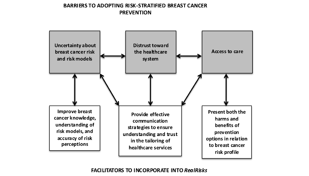Jmir Why Breast Cancer Risk By The Numbers Is Not Enough Evaluation Scheme Editor A Tool Used Mainly For Pneumatic Circuit Diagrams Schema Of Barriers And Facilitators To Adoption Assessment Appropriate Prevention Strategies Which Will Inform