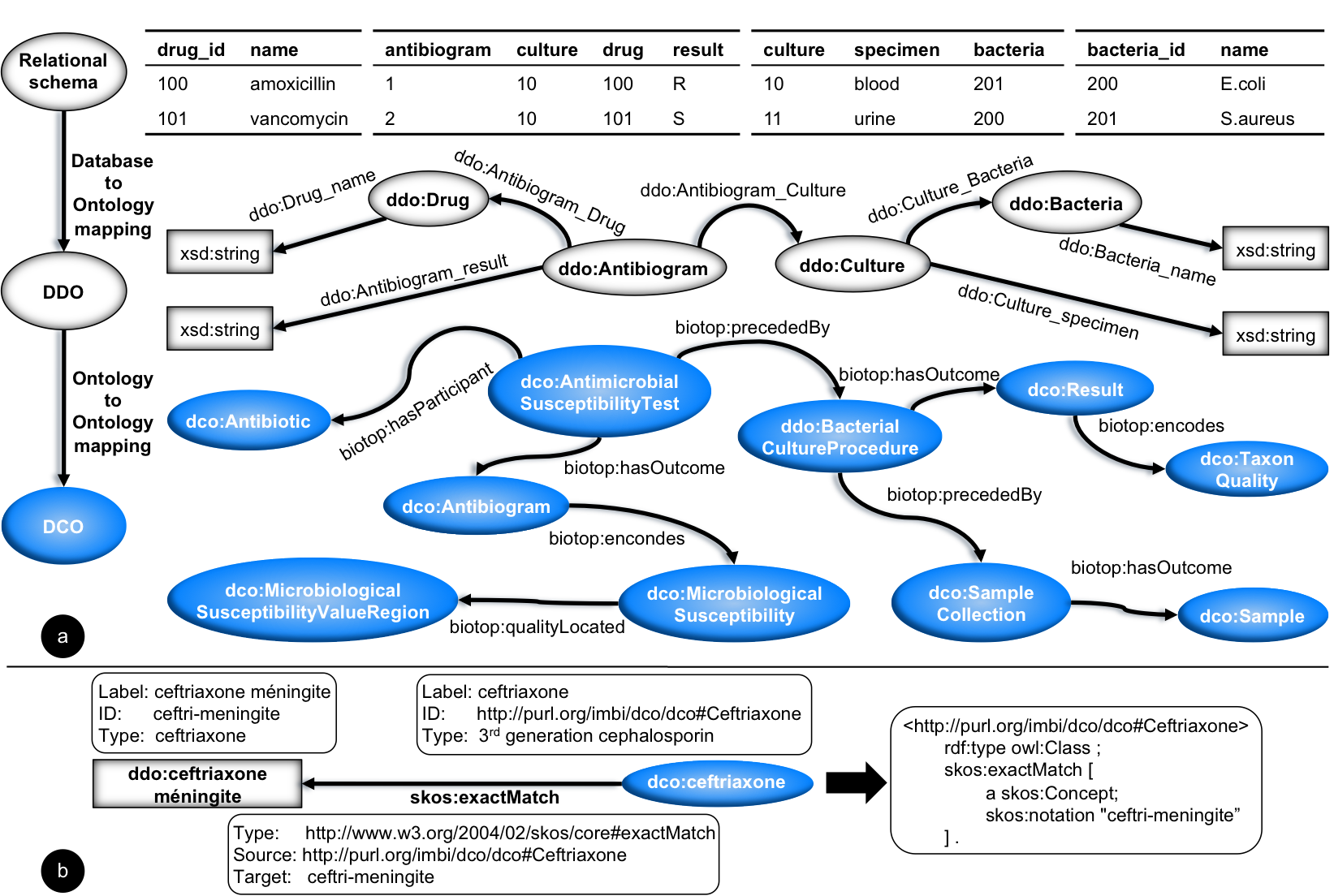Microbiology Concept Map.Jmir Building A Transnational Biosurveillance Network Using
