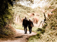Source: Pixabay; Copyright: Susanne Pälmer; URL: https://pixabay.com/photos/pair-seniors-pensioners-age-2914879/; License: Licensed by the authors.