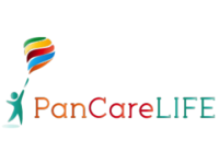 Source: PanCareLIFE; Copyright: The PanCareLIFE Consortium; URL: http://pancarelife.eu; License: Licensed by JMIR.