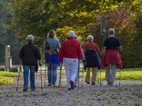 Walking group. Source: Pixabay; Copyright: Mario Ohibsky; URL: https://pixabay.com/en/nordic-walking-walkers-go-together-1814784/; License: Public Domain (CC0).